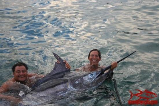 Vallarta Marlin Dorado Sailfish Tuna Bloodydecks